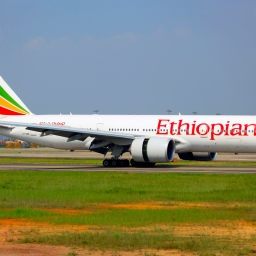 EXCLUSIVE: Inside the Ethiopian Airlines Crash